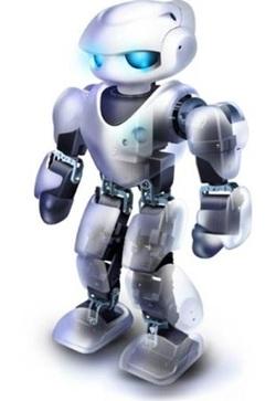 Robot Brochure - Mrs. Book's I.I.